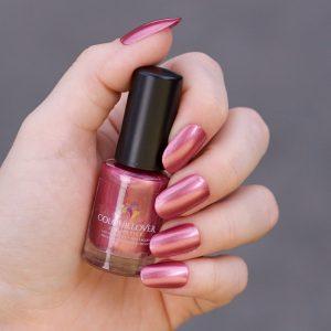 peony colour lover cosmetics
